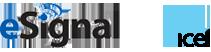 esignal_ice_logo